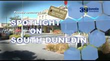 Spotlight on South Dunedin