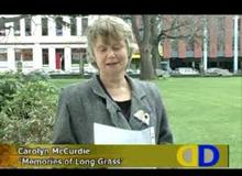 Carolyn McCurdie : Memories of Long Grass